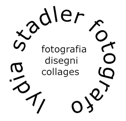Lydia Stadler fotografo plastico Logo